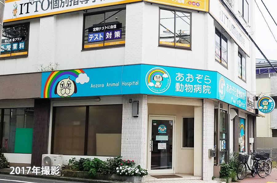水元あおぞら動物病院ITTO個別指導学院