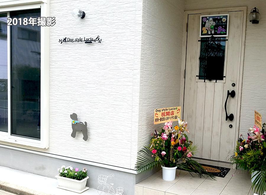 トリミングサロン 犬美容室